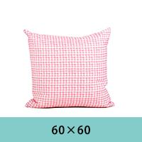 cushion-6060.jpg