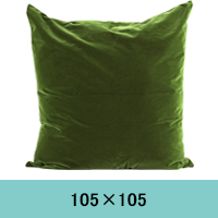 cushion-tera.jpg