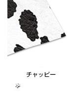 kiji_chappy.jpg