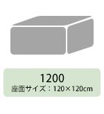 tomamu_cube_1200-se.jpg