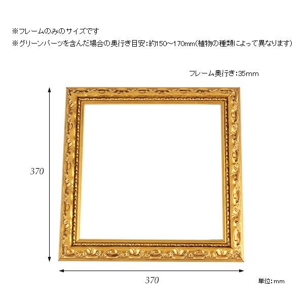 00a24367-size.jpg