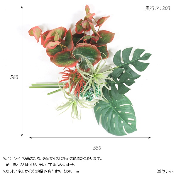 00a44155-size.jpg