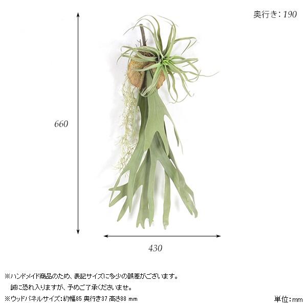 00a44163-size.jpg