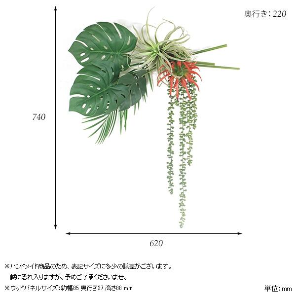 00a44170-size.jpg