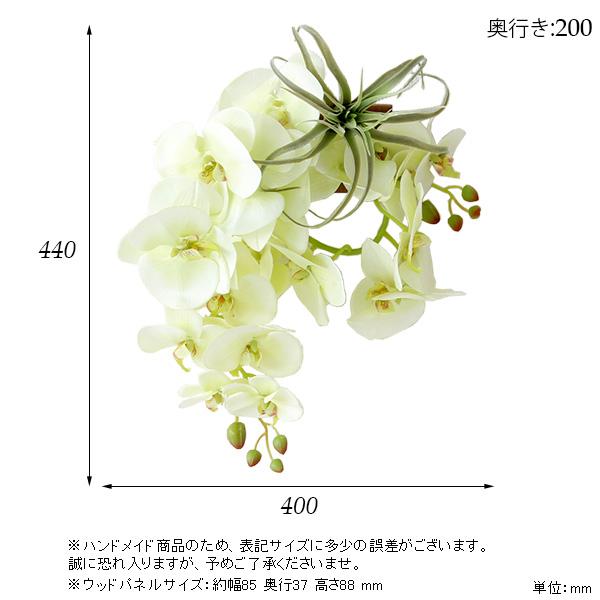 00a50359-size.jpg