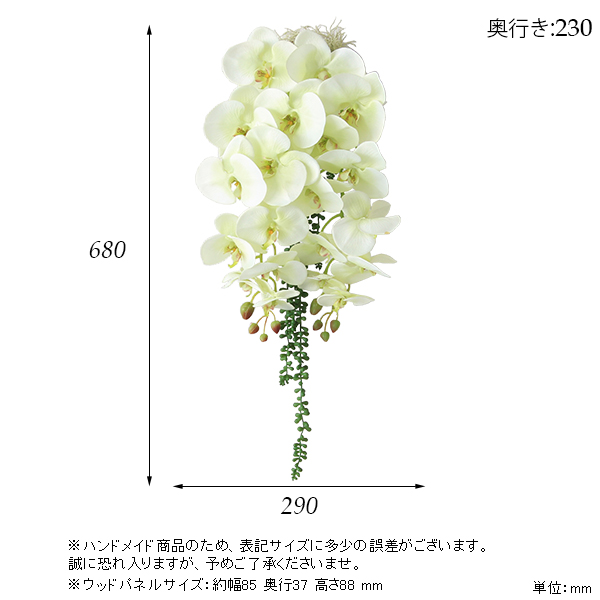 00a50360-size.jpg