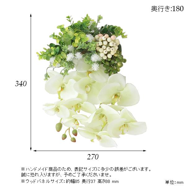 00a50361-size.jpg