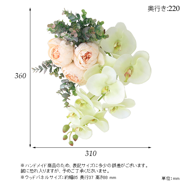 00a50362-size.jpg