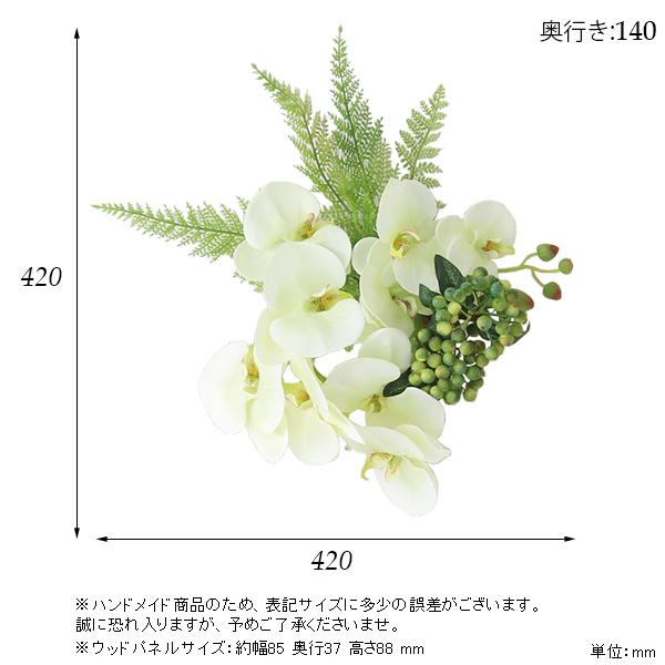 00a50363-size.jpg