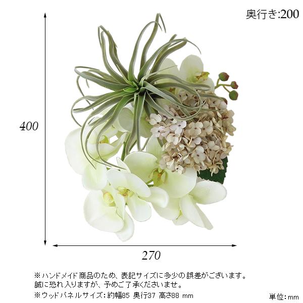 00a50364-size.jpg