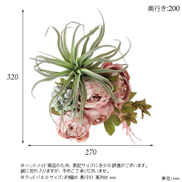 00a50366-size.jpg