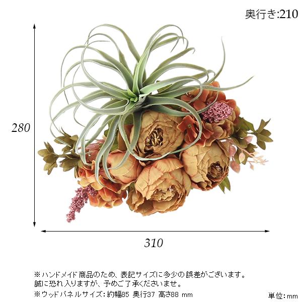 00a50367-size.jpg